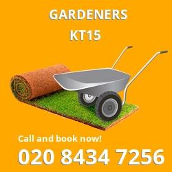 KT15 gardeners Addlestone