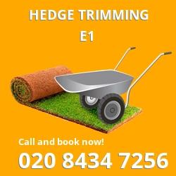 E1 garden trees services in Mile End