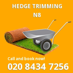 N8 garden trees services in Hornsey