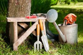 The Advantages of Professional Garden Care in Wandsworth