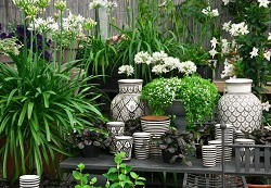 Maida Vale landscaping ideas for small gardens W9