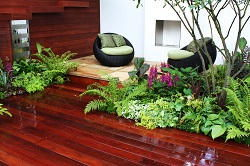 South Kensington residential landscape design SW7