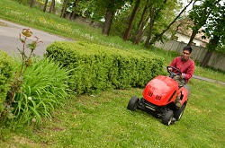 HA0 grass cutting in Alperton