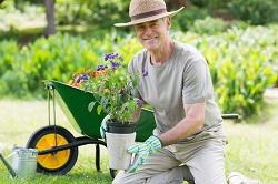 Baldock gardening services SG6