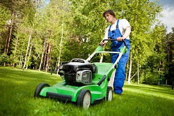 mowing lawns in West Ealing