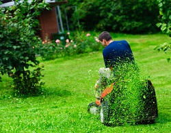 mowing lawns in Hanworth