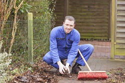 gardening services in Ladywell