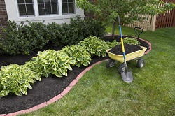 gardening services in South Kensington