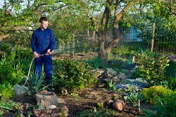 gardening services in Docklands