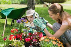 gardening services in Primrose Hill