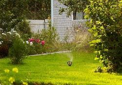 SE13 gardening Lewisham