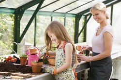 gardening services in Colney Hatch