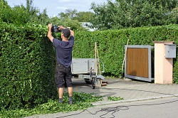 SE7 hedge cutting services