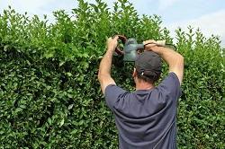 Haringey landscape gardeners N4