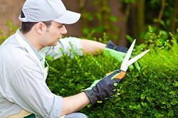 E14 landscaping and gardening company in Blackwall