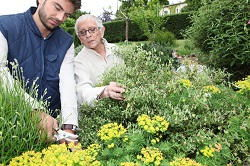 Vauxhall landscape gardeners SW8