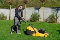 N20 landscaping edging