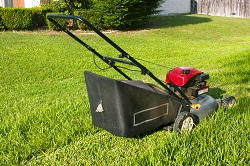 commercial landscaping WD6