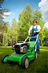 professional lawn care W8