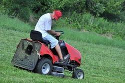 lawn care tips E12
