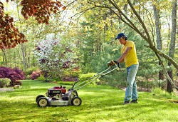 lawn care tips EC4