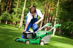 lawn care tips HA7